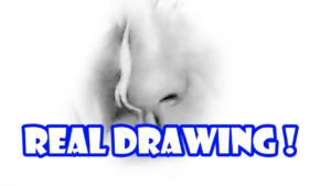 鉛筆画でリアルな鼻を描く方法