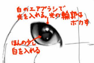 リアルな絵の猫の目の書き方