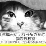 リアルな絵の描き方-子猫の描き方講座