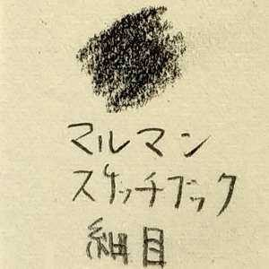 リアル絵の用紙-マルマンスケッチブック細目