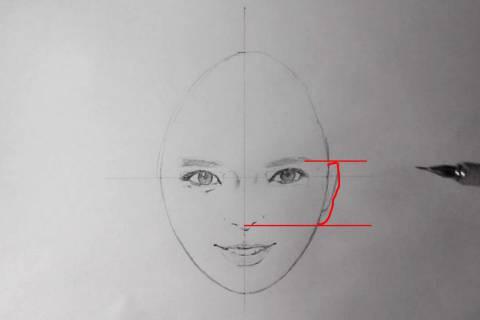 リアル絵の顔のアタリの描き方画像7