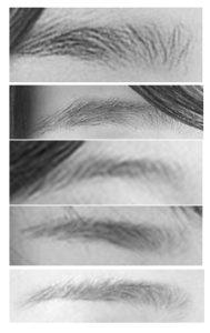 リアルな絵の眉毛の書き方参考画像