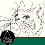 簡単イラストの描き方-子猫の書き方サムネイル