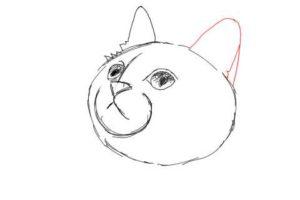 簡単イラストの描き方-子猫の書き方10