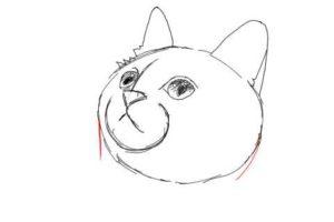 簡単イラストの描き方-子猫の書き方11