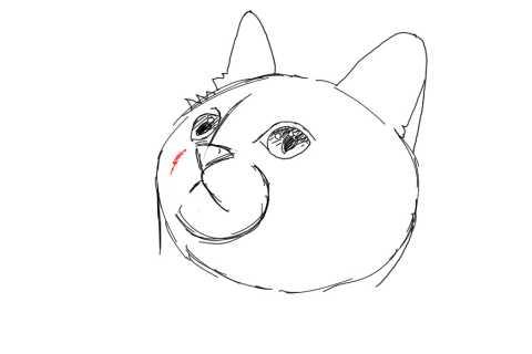 簡単イラストの描き方-子猫の書き方12