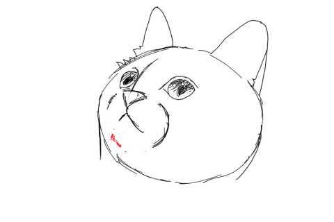 簡単イラストの描き方-子猫の書き方13