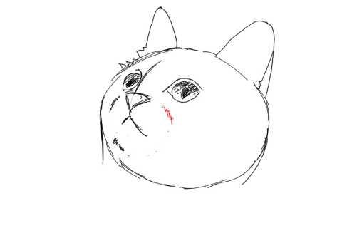 簡単イラストの描き方-子猫の書き方14