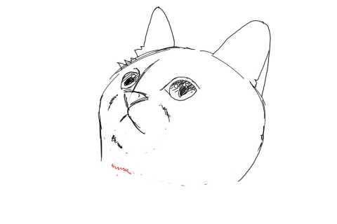 簡単イラストの描き方-子猫の書き方15