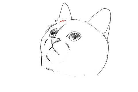 簡単イラストの描き方-子猫の書き方16