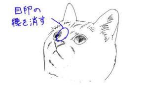 簡単イラストの描き方-子猫の書き方19