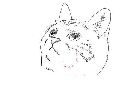 簡単イラストの描き方-子猫の書き方22
