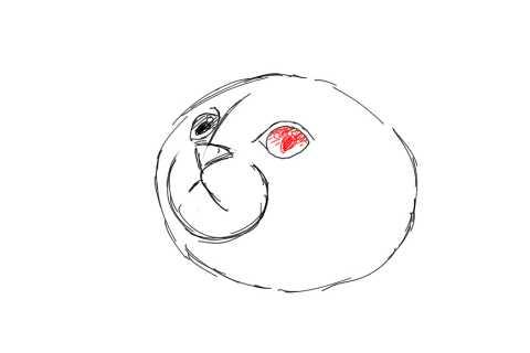 簡単イラストの描き方-子猫の書き方7