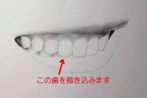 リアルな絵の描き方-歯の描き方20-2