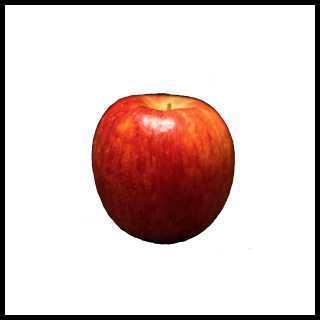 リアルな絵の描き方-リンゴを紙に描くときの大きさ小