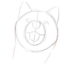 リアルな絵の描き方-柴犬のスケッチの書き方05