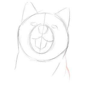 リアルな絵の描き方-柴犬のスケッチの書き方06