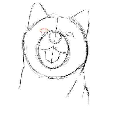 リアルな絵の描き方-柴犬のスケッチの書き方07