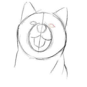 リアルな絵の描き方-柴犬のスケッチの書き方08