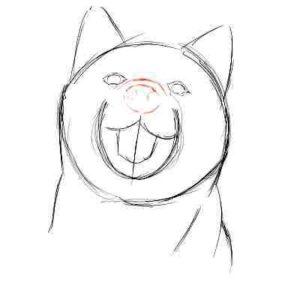 リアルな絵の描き方-柴犬のスケッチの書き方09