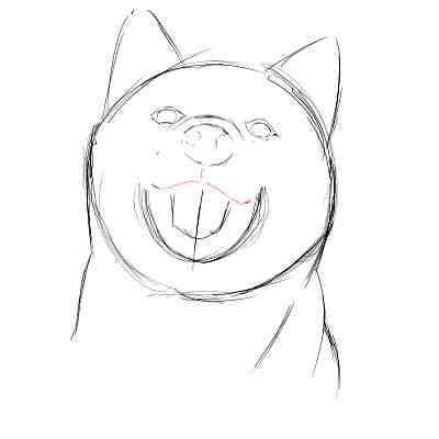 リアルな絵の描き方-柴犬のスケッチの書き方10
