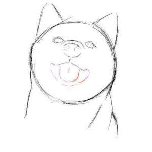 リアルな絵の描き方-柴犬のスケッチの書き方11