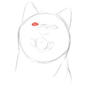 リアルな絵の描き方-柴犬のスケッチの書き方13