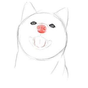 リアルな絵の描き方-柴犬のスケッチの書き方15