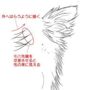 リアルな絵の描き方-チワワ犬の描き方7-2