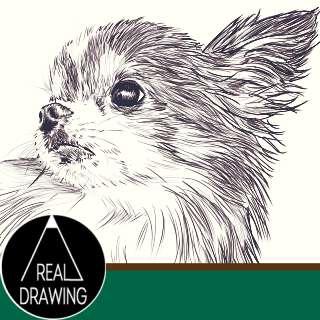 リアルな絵の描き方-チワワ犬書き方サムネイル