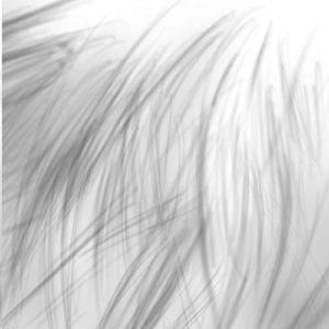 リアルな絵の描き方-分割した書き方4