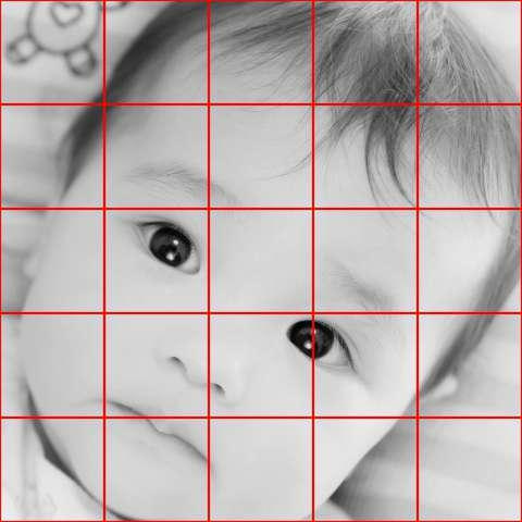 リアルな絵の描き方-分割して観察する原画写真グリッド有