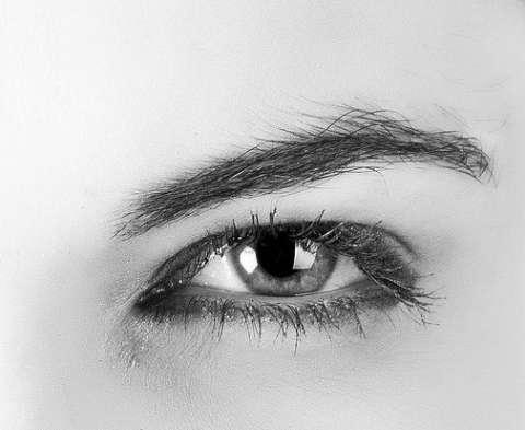 リアルな目の描き方-原画写真