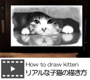 リアルな子猫の描き方_プレミアムレッスンタイトル