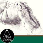 簡単イラストの描き方-ハムスターの書き方サムネイル-セピア