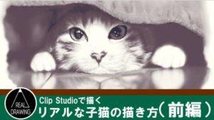 リアルな子猫の描き方サムネイル(前編)
